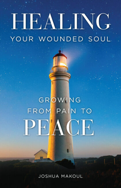 A Healing Driven Life book cover