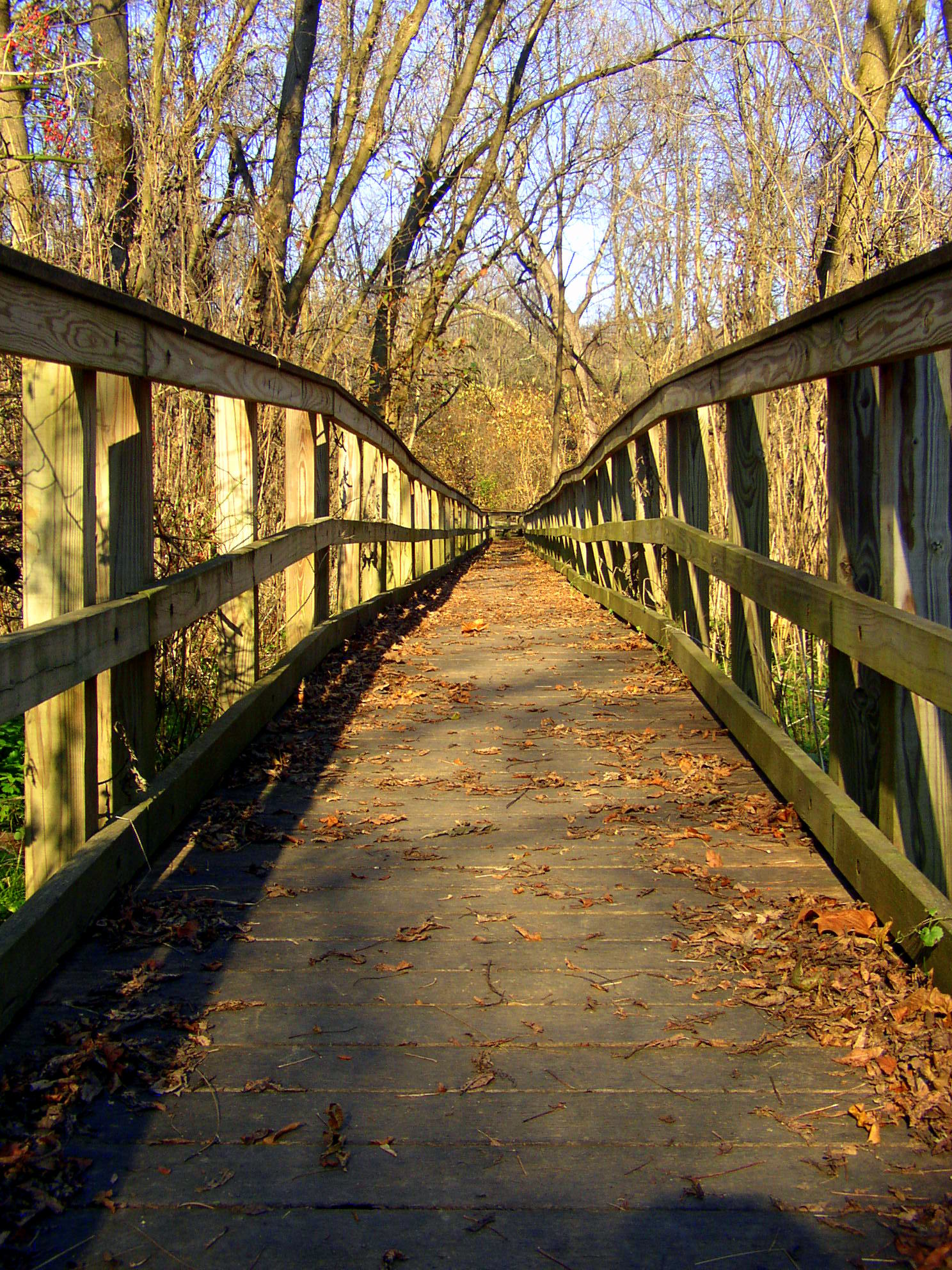 Wildlands Conservancy Trail