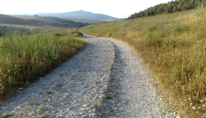 A Journey through Romans 9 (Part One)