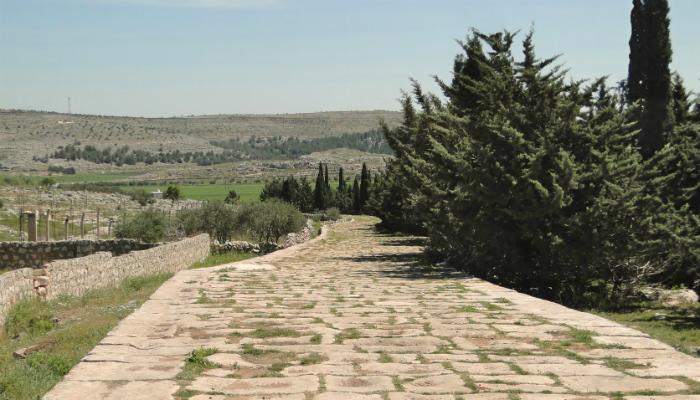 A Journey through Romans 9 (Part Three)