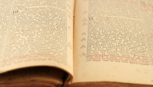The Apostle Paul's Reading of Psalm 14
