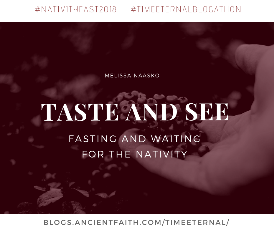"Title image of blog: "" Fasting and Waiting for the Nativity"""